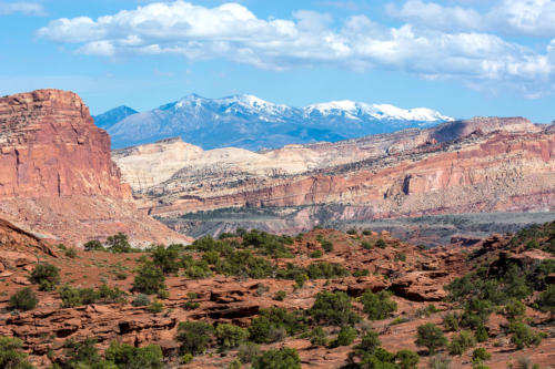 Ouest américain - Petrified Forest & Capitol Reef