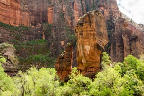 Ouest américain - Zion National Park