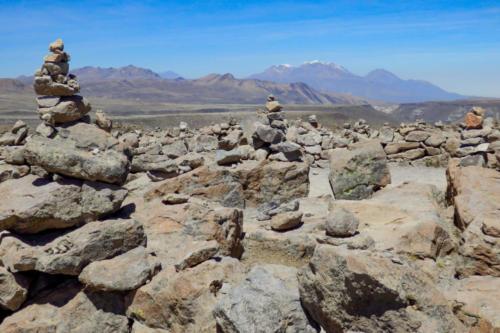 Pérou- réserve nationale des Salinas et Aguada Blanca