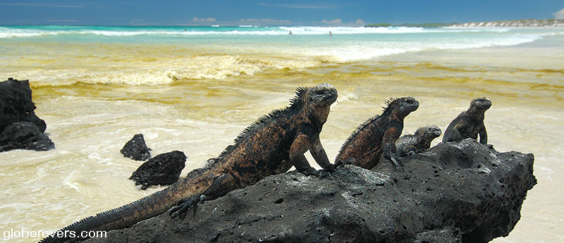 Galapagos Islands of Ecuador