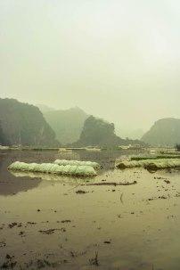 Ninh Binh 4