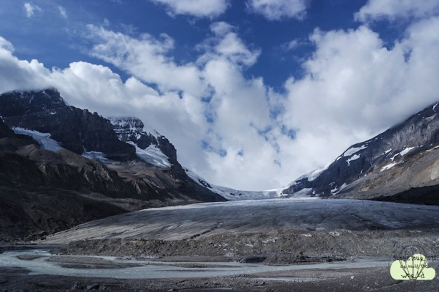 Icefield7