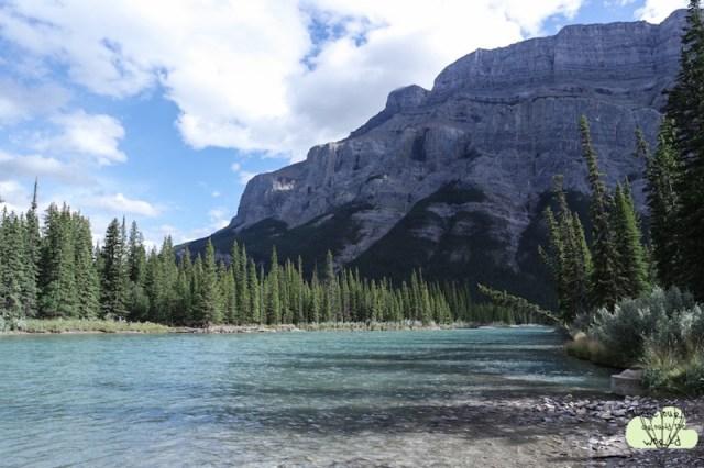 Banff 6