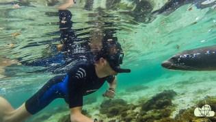 Unterwasser 7