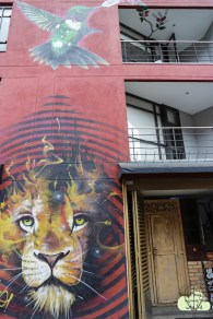 Bogota 7