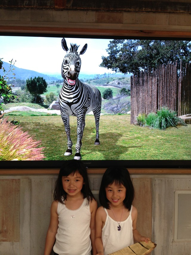 """This was so much fun. There's a """"wizard of oz"""" somewhere pretending to be this zebra, so the kids would ask the zebra question and he would answer as if he really talks. The kids loved it!"""