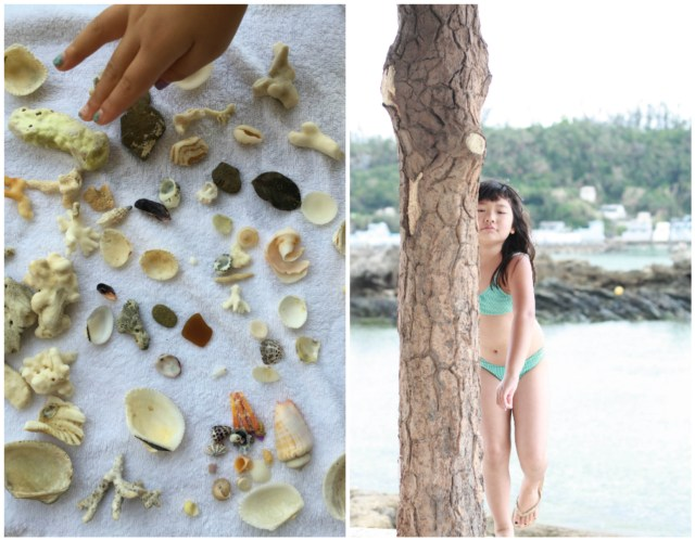 Look at the beautiful collection of shells they gathered from the beach!