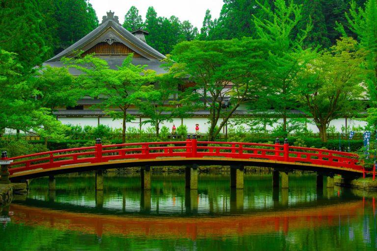 beautiful bridge daylight environment