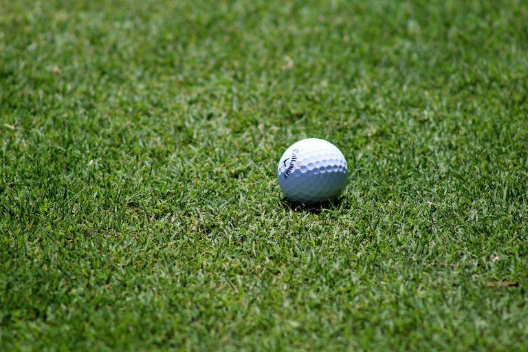grass ball golf golf ball