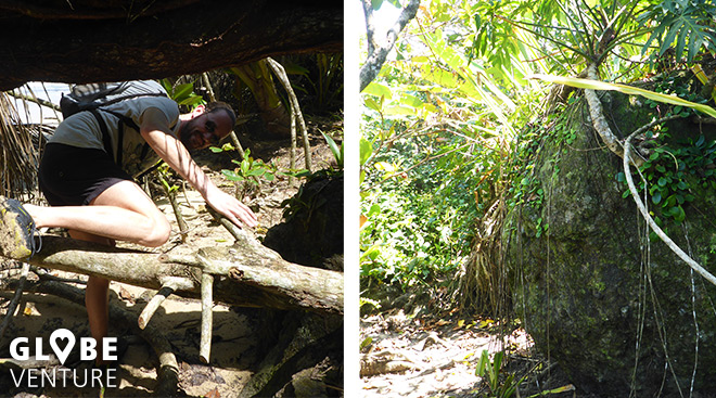 Welcome to the Jungle - Isla Bastimentos