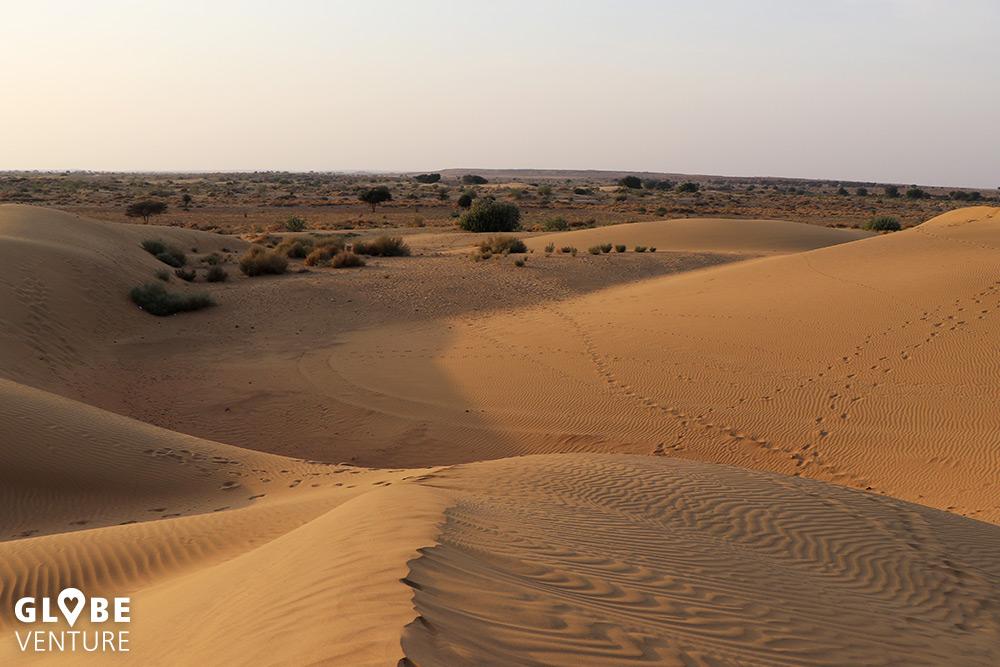 Die Wüste Thar