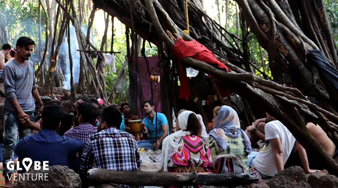 Saßen unter diesem Baum tatsächlich einst die Beatles?