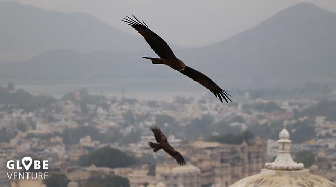 Milane über Udaipur