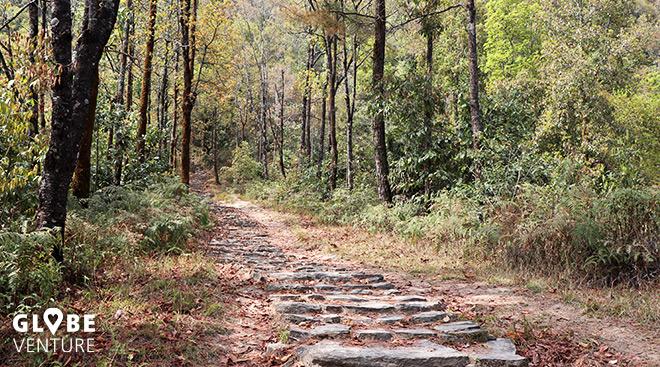 Weg nach Dhampus