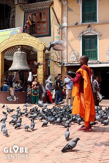 Mönch füttert die Tauben Boudanath Stupa