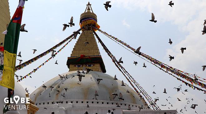 Stupa Boudanath Kathmandu
