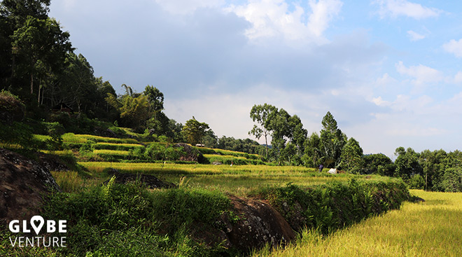 Sulawesi Tana Toraja