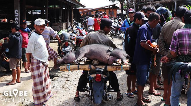 Sulawesi Tana Toraja Bolu Bazar