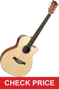 Electric Acoustic Guitar Guitar-min