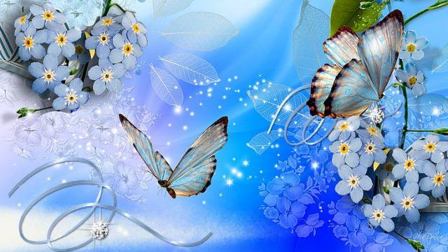 O que as borboletas simbolizam? 4 significados poderosos e simbolismo