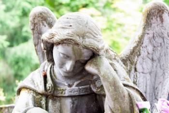 Anjo número 556 e seu significado e simbolismo
