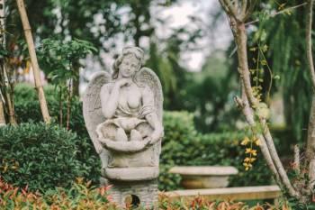 Anjo número 562 e seu significado e simbolismo
