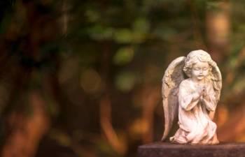 Anjo número 313 e seu significado e simbolismo