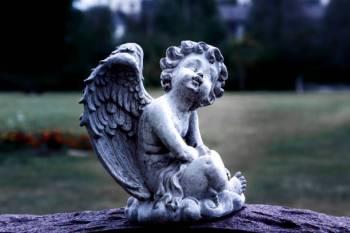 Anjo número 8181 e seu significado e simbolismo