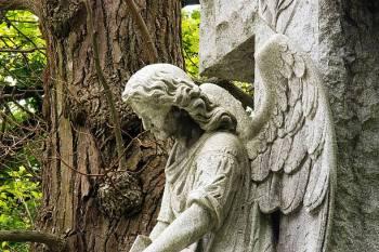 Anjo número 2424 e seu significado e simbolismo