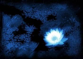 Horóscopo hoje: Previsão astrológica para 6 de outubro