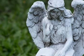 Anjo número 8008 e seu significado e simbolismo