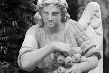 Anjo número 37 e seu significado e simbolismo