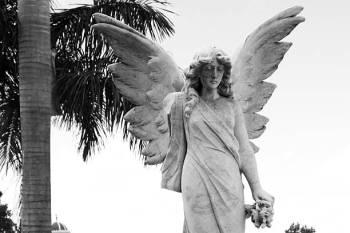 Anjo número 85 e seu significado e simbolismo