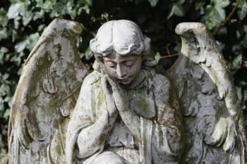 Anjo número 244 e seu significado e simbolismo