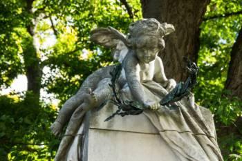 Anjo número 5151 e seu significado e simbolismo