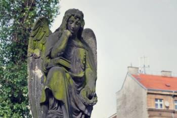 Anjo número 344 e seu significado e simbolismo