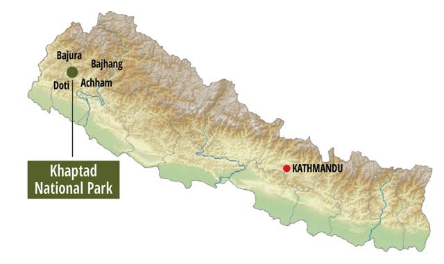 Khaptad National Park 6