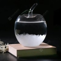 Apple Shape Weather Forecast Storm Glass Crystal Wishing Ball