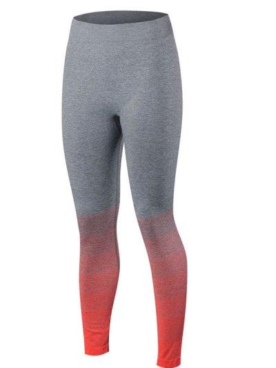 Gradient Color Sport Leggings