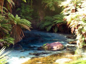 Blue Springs - Putaruru