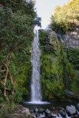 Egmont Park - Dawson Falls