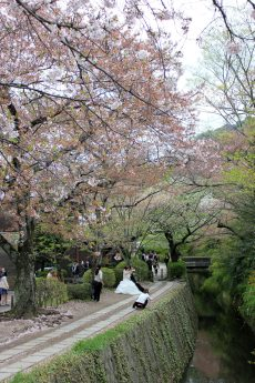 Kyoto - Philosopher's Walk
