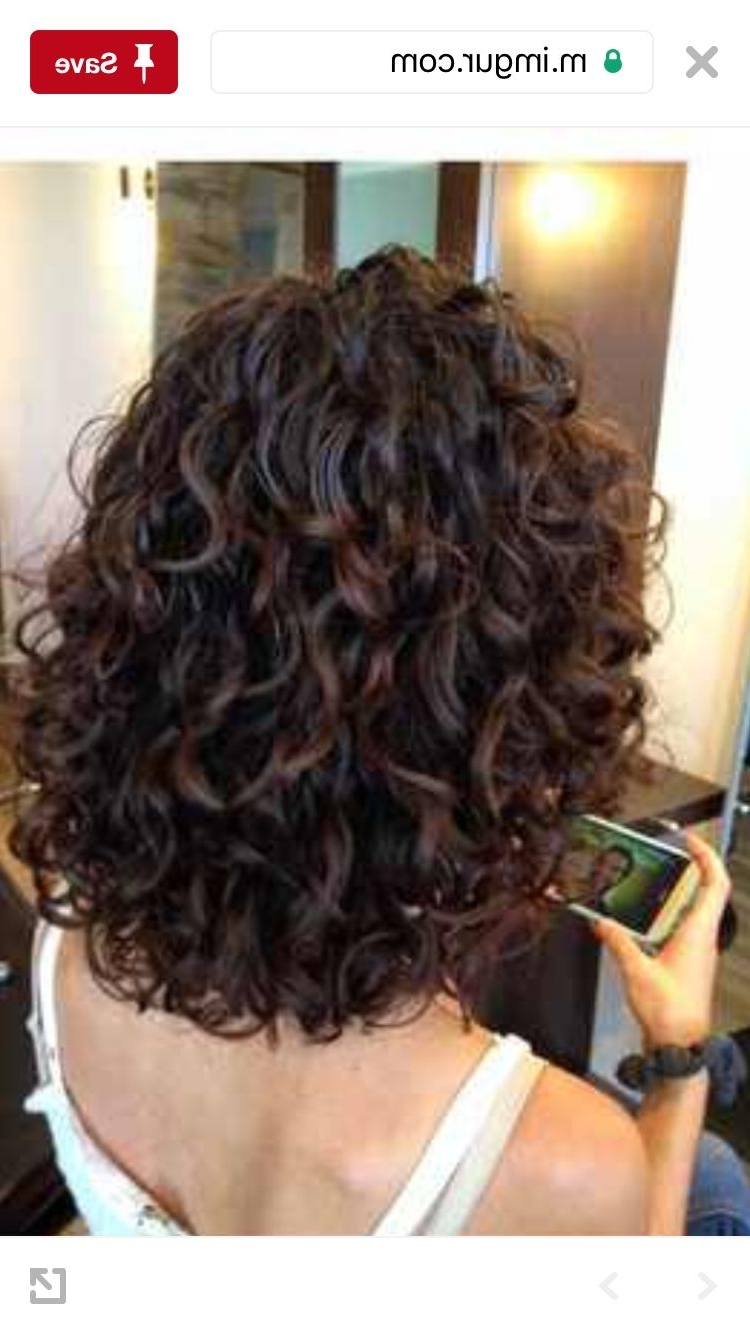 Like Layers In Back   Curly Hair Styles, Curly Natural Curls Layered Medium Curly Bob Hairstyles