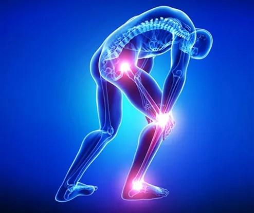 Orthopaedic & Trauma