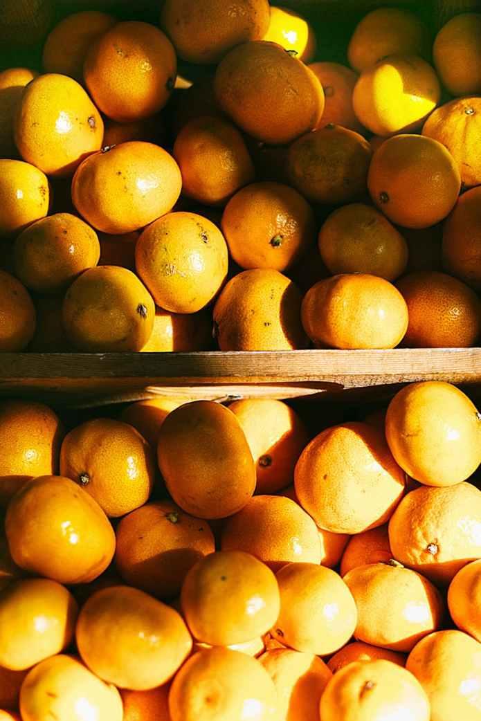 photo of pile of orange fruits