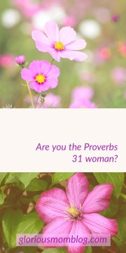 Are you the Proverbs 31 woman? Every Christian wife wants to be, but do we really understand what this scripture is saying? Read about it at gloriousmomblog.com.