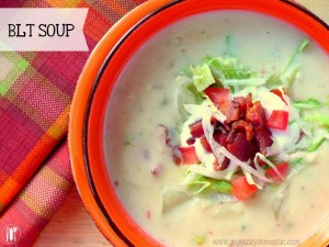 Image courtesy: http://glorioussouprecipes.com/wp-content/uploads/2014/05/Recipe-For-BLT-Soup.jpg