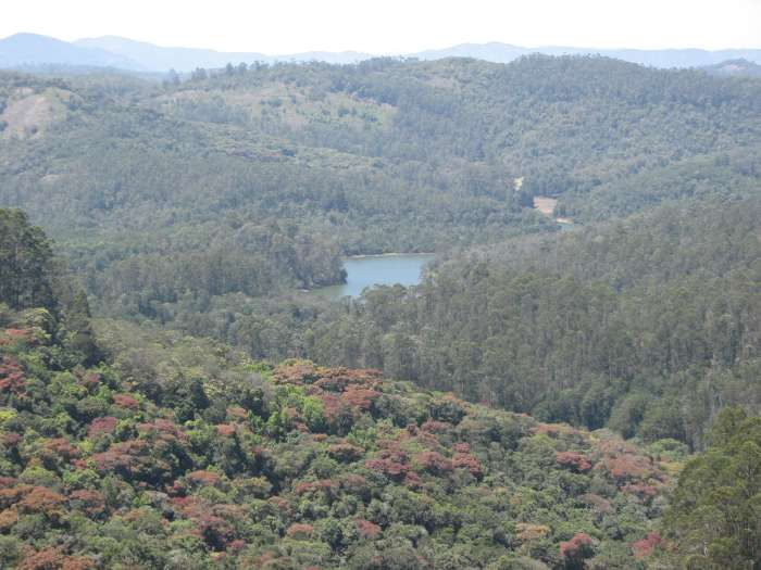 Berijam Lake View from Madi Kettan Solai in kodaikanal