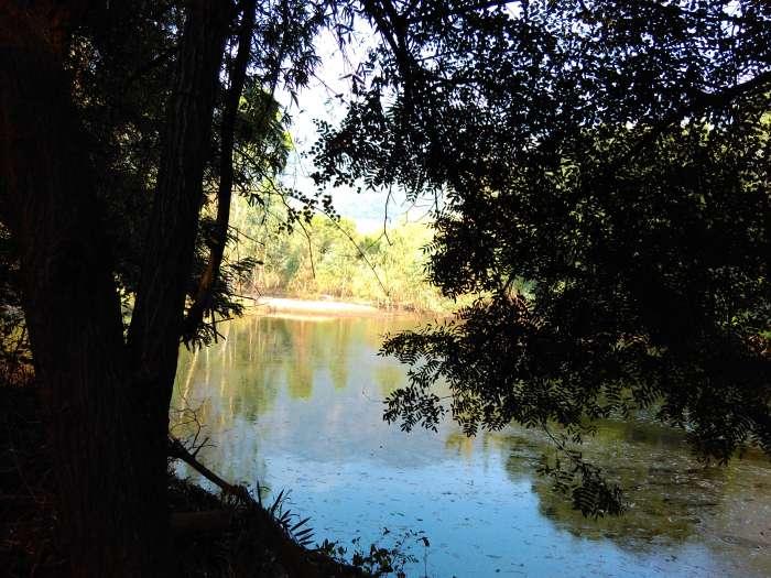 Lake in the forest Kuruvampatti zoo