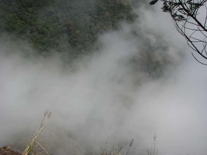 kodaikanal mist